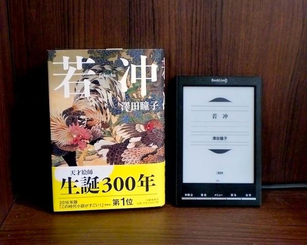 【電子書籍】『若冲』『ポーの一族』『昼のセント酒』などおすすめ作品!