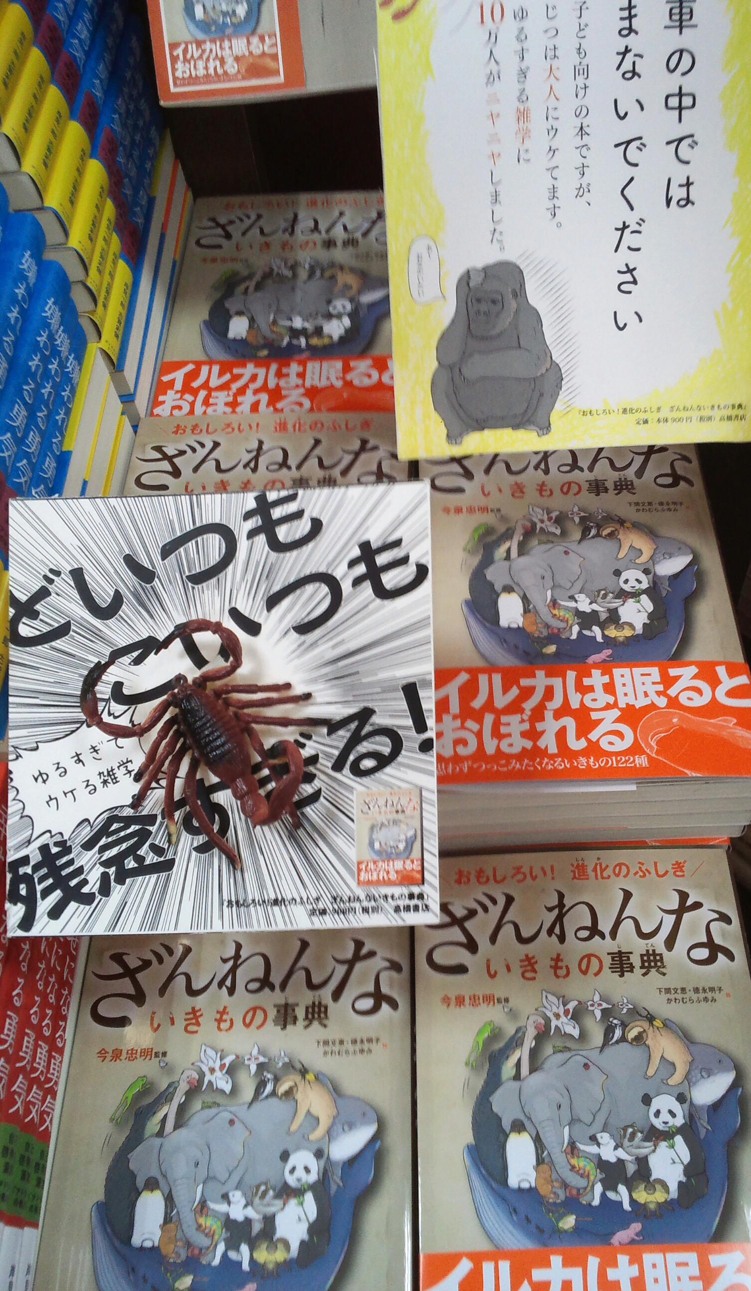 最新BEST5発表!(2016・8/7-8/13)