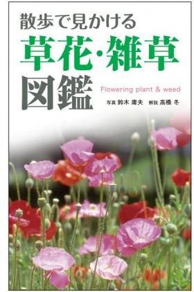 『散歩で見かける 草花・雑草図鑑』 鈴木庸夫(写真)/高橋冬(解説)