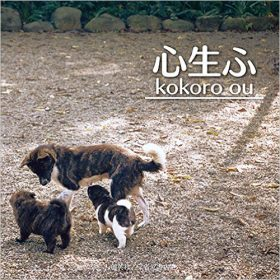 『心生ふ kokoro ou』 大石惠美子(著)