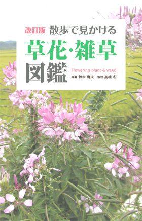 『改訂版 散歩で見かける草花・雑草図鑑』 鈴木庸夫(写真)/高橋冬(解説)