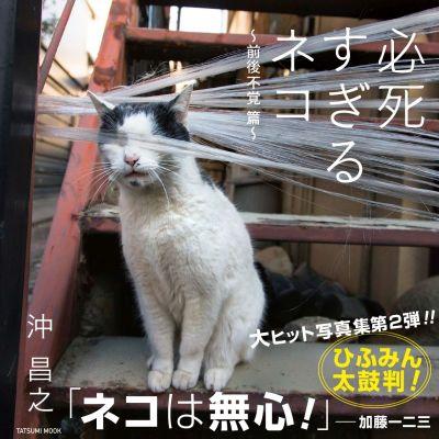 『必死すぎるネコ ~前後不覚篇~』刊行記念 沖昌之さんサイン会