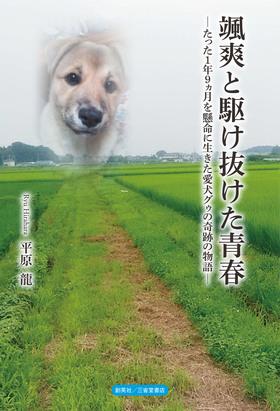 『颯爽と駆け抜けた青春』 平原龍(著)